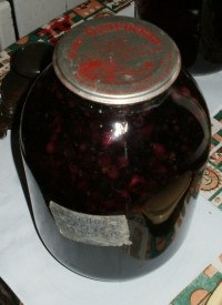 Зимний компот из ирги черной смородины и черемухи
